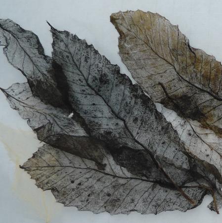 Papier végétal