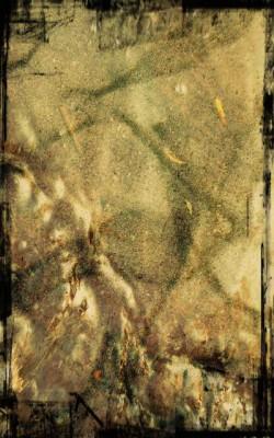 1-Mes images1_pe1.jpg