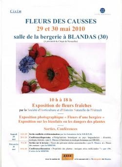 week end fleurs.jpg