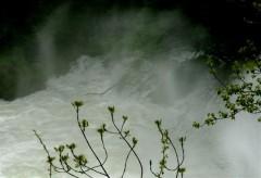 eaux de pâques 05.jpg